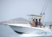 fishing trip sal cape verde